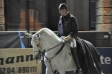 TrainingLipizzanerFotoAnnemariePrinz